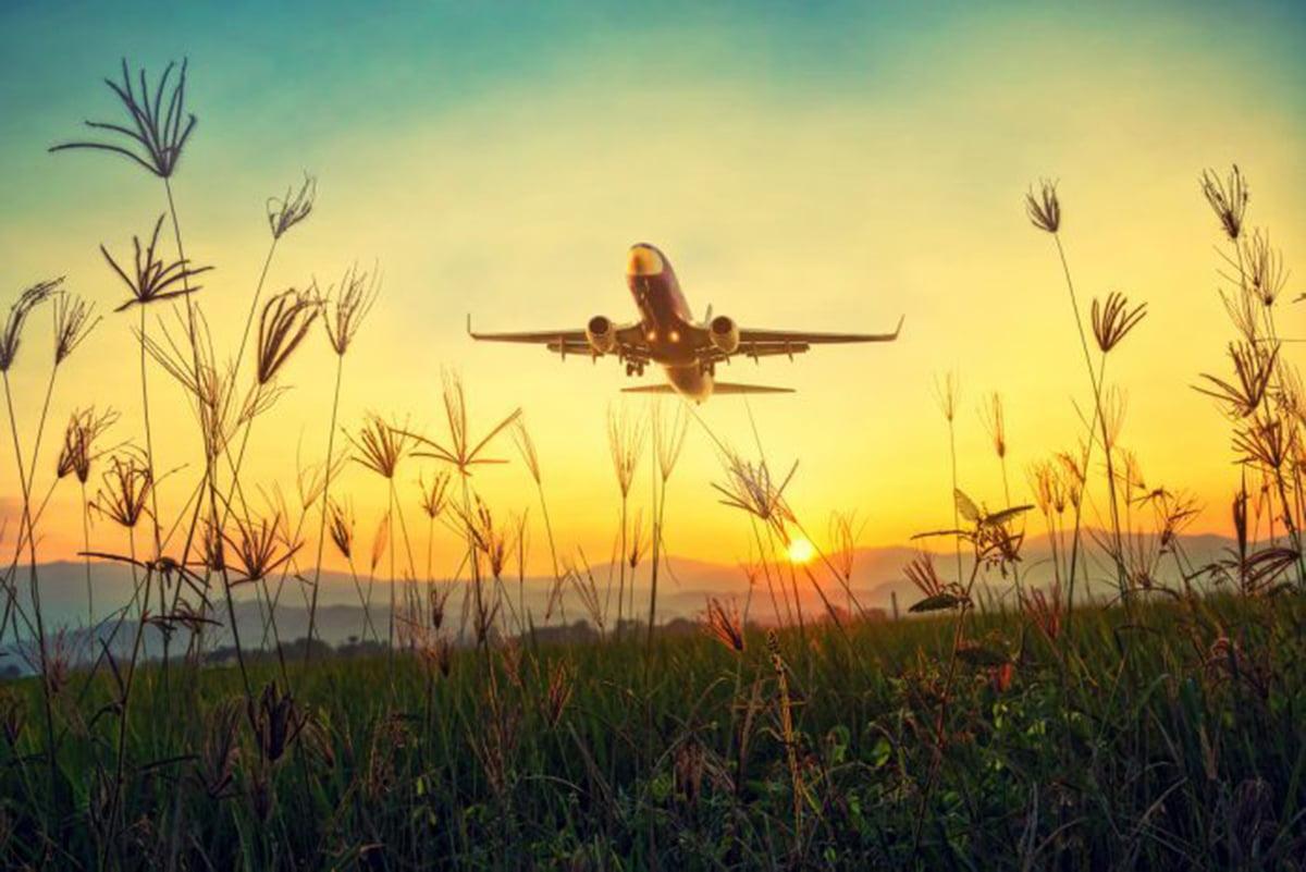net avion