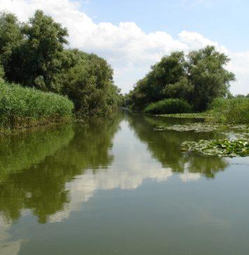 Excursie in Delta Dunarii 2020