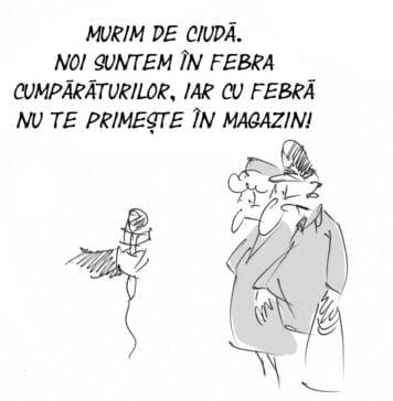 Caricatura 29 decembrie