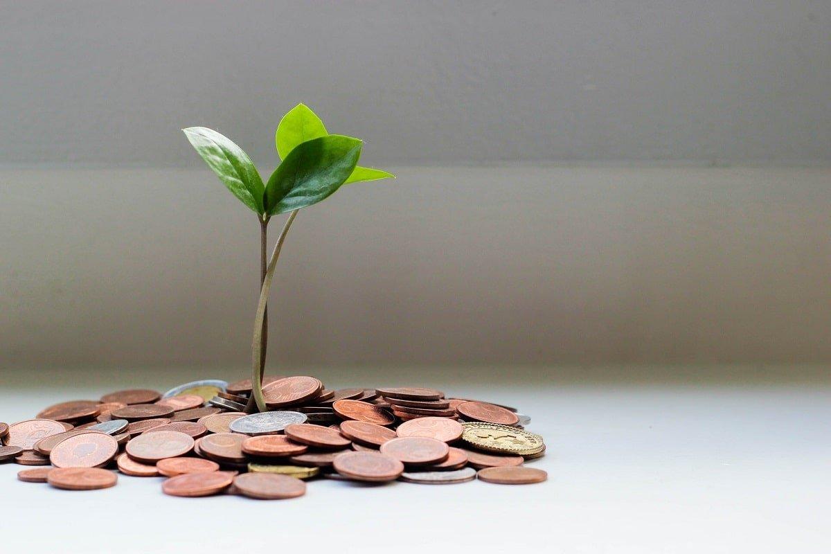 investitie bani