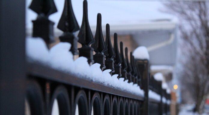 gard iarna