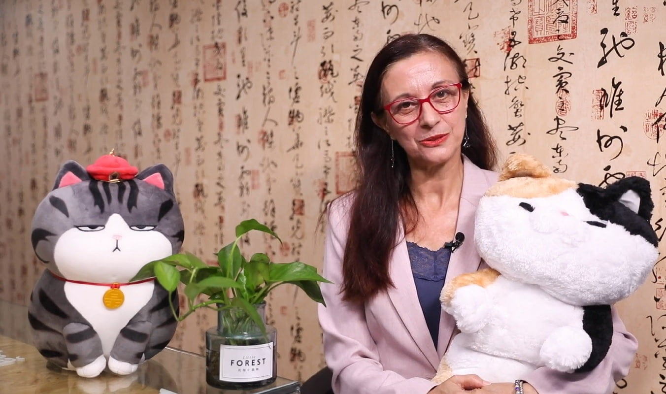 animale companie china